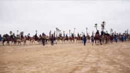 tour su cammelli marrakech