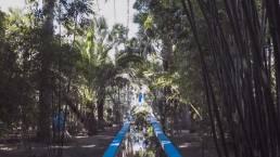 foresta a marrakech